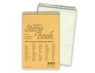 Steno Notebooks