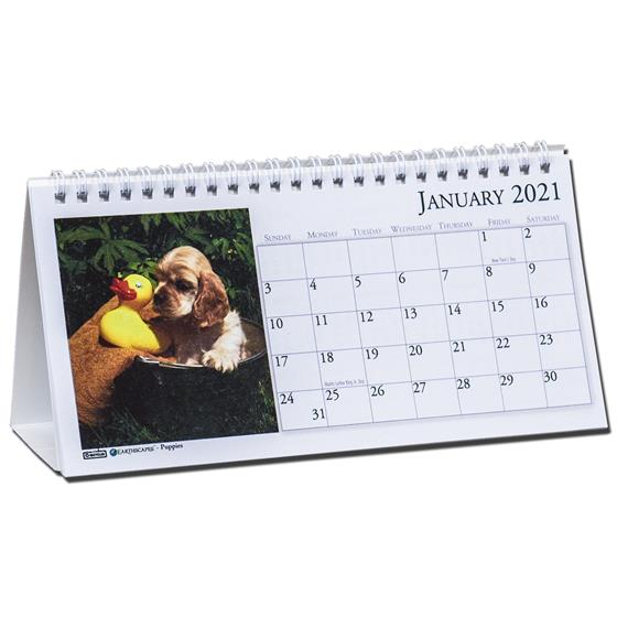 2021 3659 HOD3659 Earthscapes Puppies Tent Calendar By ...