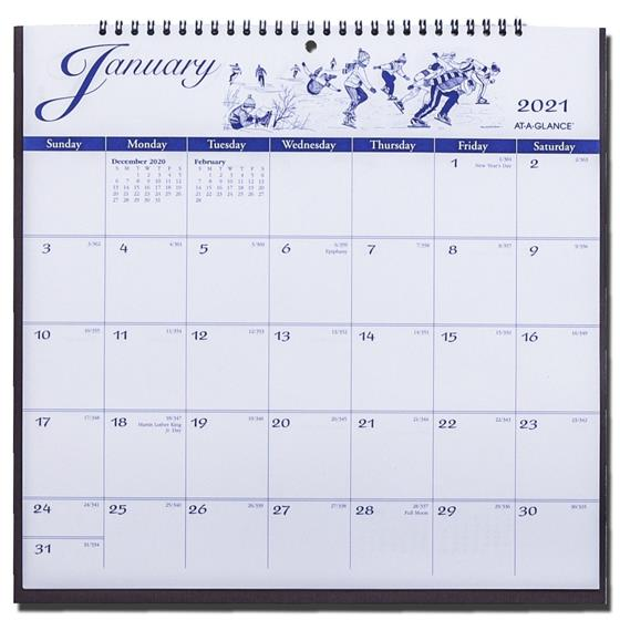 2021 At-A-Glance G1000-17 Illustrated Monthly Wall ...