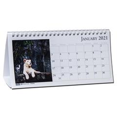 2021 3689 HOD3689 Earthscapes Wildlife Tent Calendar By ...